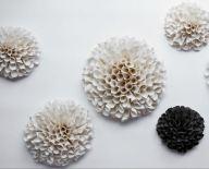 Coral Installation