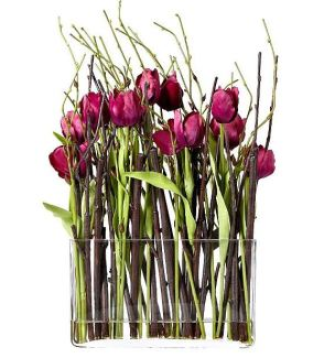 Tulips from Jane Packer at Debenhams